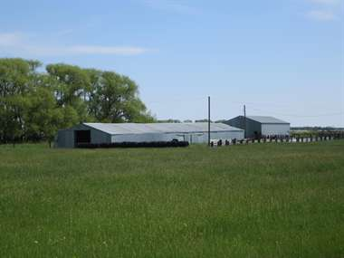 Listing: 7481023, Tolna, ND
